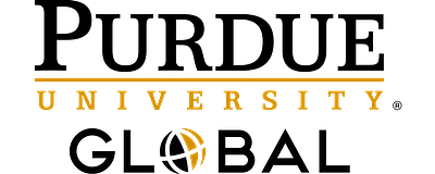 york university online programs